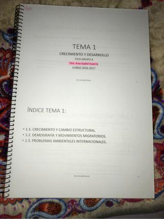 Apuntes y temario GFICO 1º
