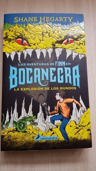 Las aventuras de Finn en Bocanegra