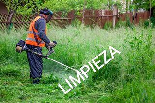 limpieza terreno,Poda,desbroce,etc...