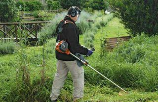 Limpieza de fincas, jardinero