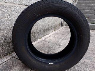 Neumático cuatro estaciones good year