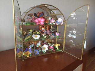 Vitrina con mariposas