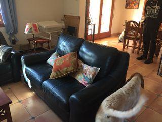 Sofas cuero/Leather sofas