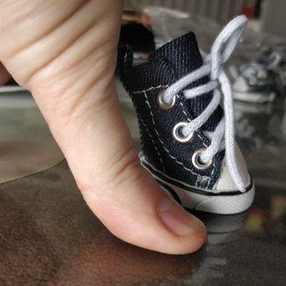 zapatos pequeños perro
