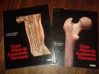Gran atlas McMinn de la anatomia humana (2 tomos)