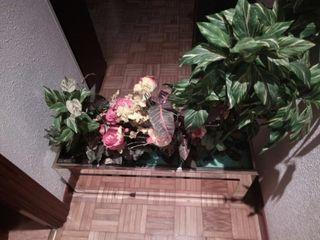 Jardinera cristal elegante con plantas decorativas