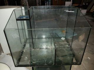 sump acuario marino 65x55x50
