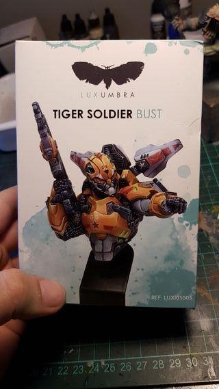 busto luxumbra tiger soldier