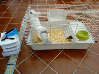 jaula y accesorios para conejos o cobayas