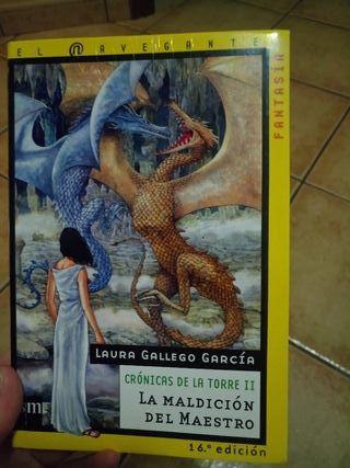 Libro La maldición del maestro