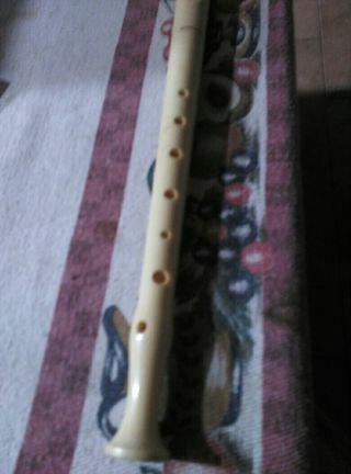 flauta para el cole