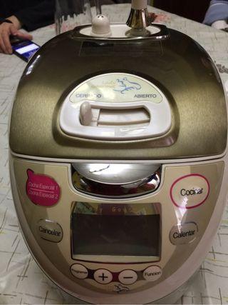 Good Robot De Cocina Lady Gourmet ...
