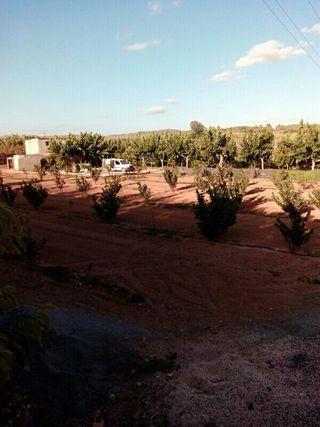 Terreno rústico