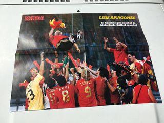 Poster Luis Aragonés