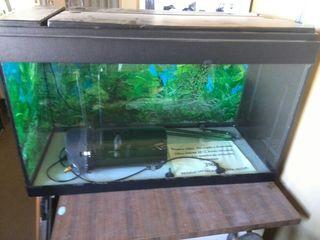 acuario 120 litros completo