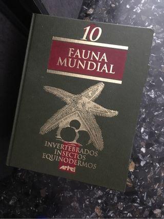 Enciclopedias Larousse y Fauna