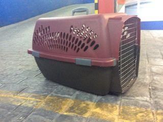 Trasportin mascotas Pet Taxi