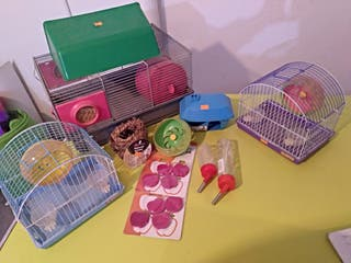 Lote de artículos de roedores
