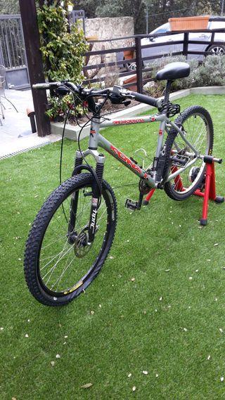 Bicicleta montaña + rodillo