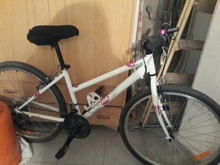 Bicicleta de montaña adulto +cuenta kilomet