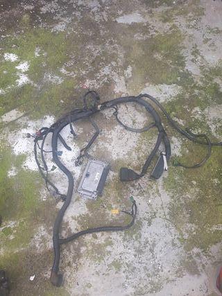 cableado interior y centralita