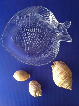 Plato y conchas