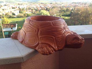 Maceta con diseño de tortuga