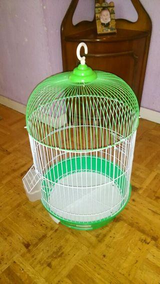 Haula Pájaros