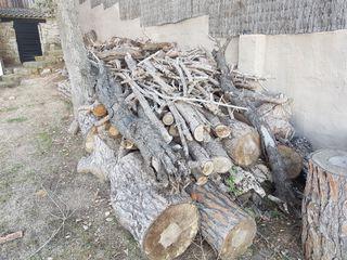 Leña de pino cortada (el precio es de toda la leña
