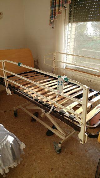 cama hospital geriatrica