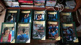 Saga libros el internado