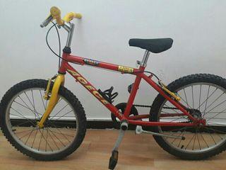 Bicicleta infantil 20'