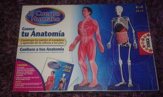 El cuerpo humano ( EDUCA )
