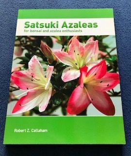 Libro Satsuki Azaleas for Bonsai