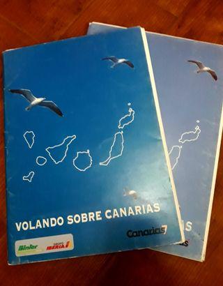 100 Lamninas Volando sobre Canaria