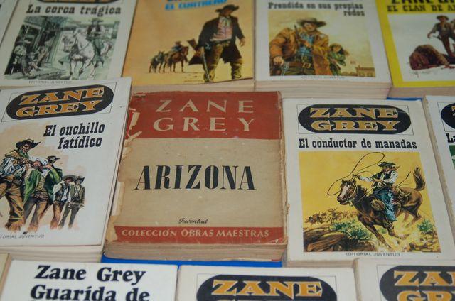 Lote de libros Novelas Pulp-46 libros western ZANE