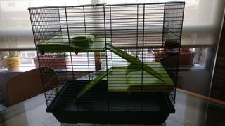 Jaula roedor