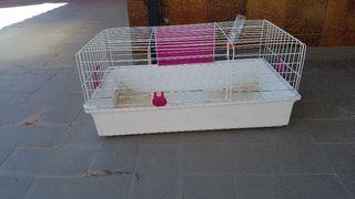 Jaula conejo