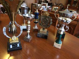 Trofeos Copas Personalizables