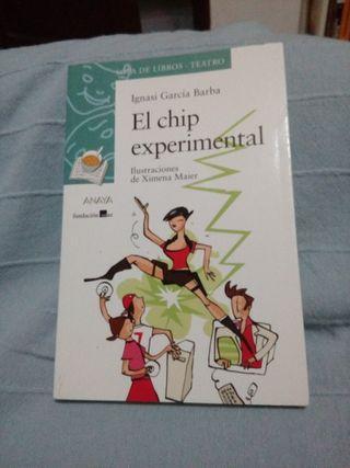 El chip experimental Ignasi García Barba