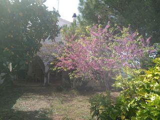 Casa de Campo LA SELLA- ALBARDANERA