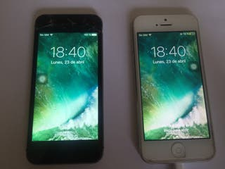iPhone 5 y iPhone 5s