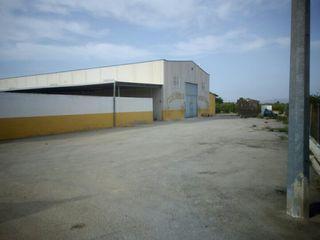 instalaciones hipicas