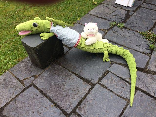 Dragon y gatito decoracion,