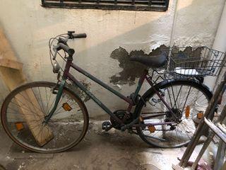 Bicicleta Globus. Bike