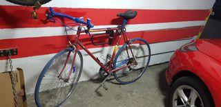 Bicicleta Carrera Orbea