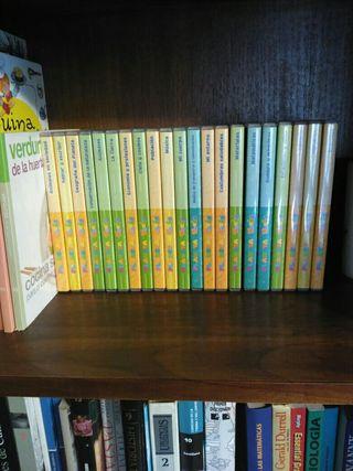 coleccion de libros de aprendizaje de inglés