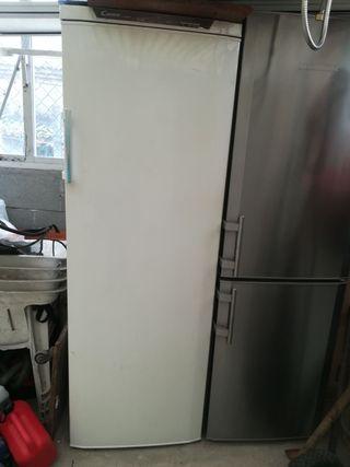 Congelador CANDY