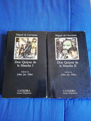 OFERTA libros don quijote de la Mancha I y II