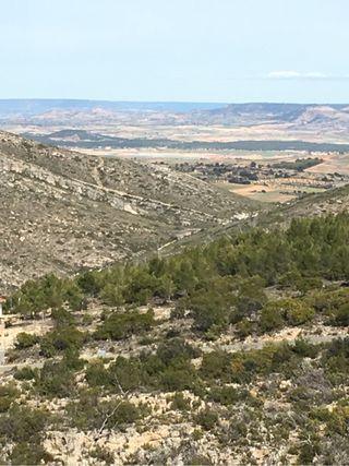 Parcela urbana Nueva sierra 1600m